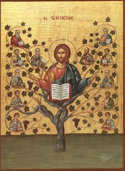 Le Christ Vraie Vigne