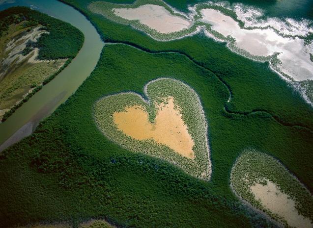 Coeur de Voh (Nouvelle-Calédonie),Yann Arthus Bertrand