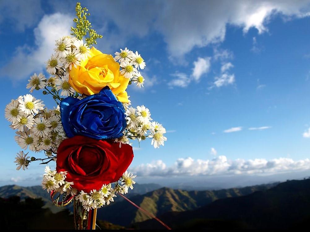 Bandera venezolana con flores